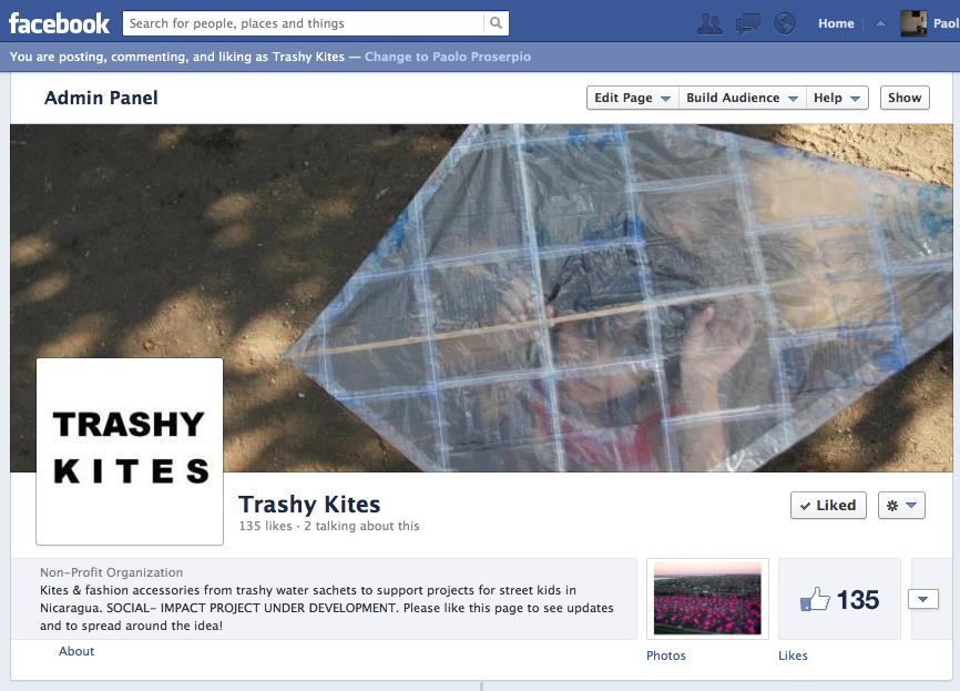 Proyecto Trashy Kites